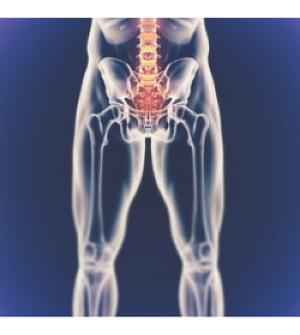 AMTA training - Treatment of the Pelvis and Lumbar Spine Level 1 course-  Friday 10 & Sat 11 May 2019